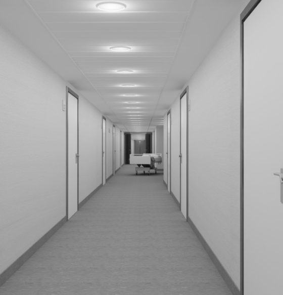 hospital pardo aravaca madrid 29-01-2011 05